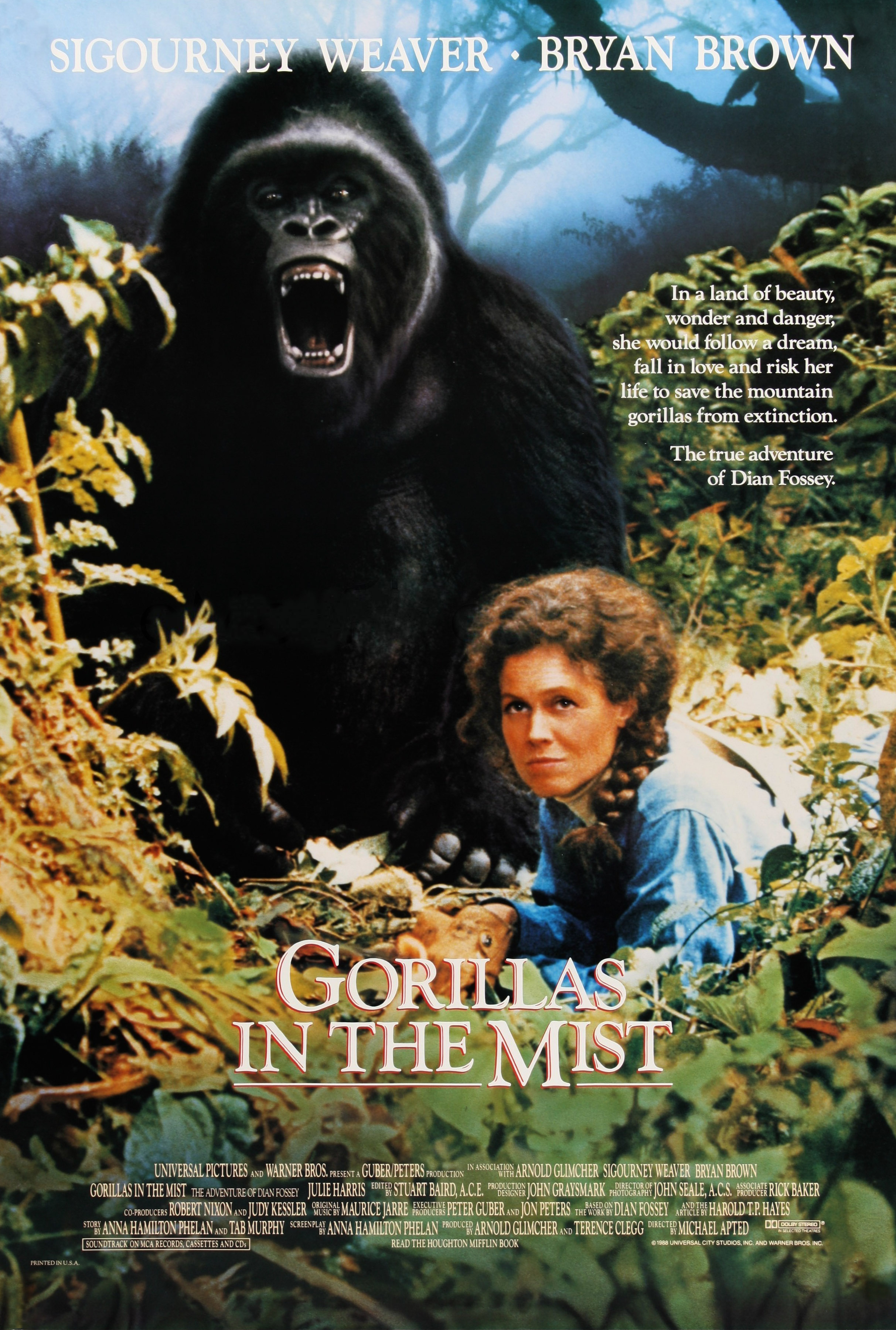 GORILAS EN LA NIEBLA (Gorillas in the Mist: The Story of